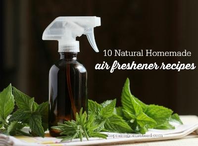 10 Homemade Air Freshener Recipes