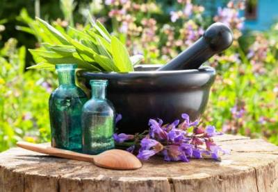 Top 5 Medicinal Herbs And How They Heal