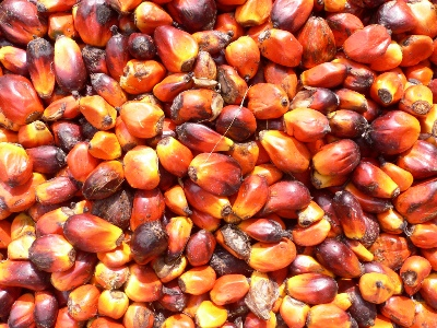 Is Palm Oil Safe For Natural Aging