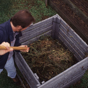 5 Easy Steps to Making Compost Fast