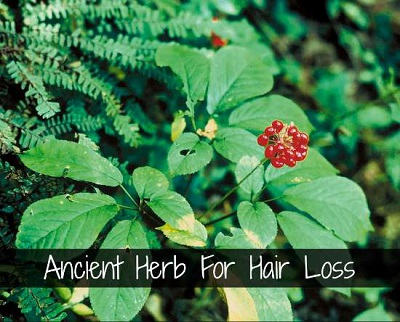 Ancient Herb For Hair Loss
