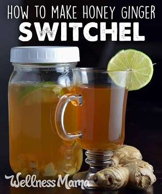 How to Make a Ginger Honey Switchel Drink