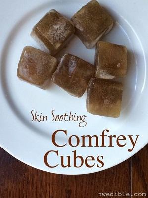 DIY Sunburn-Soothing Comfrey Cubes