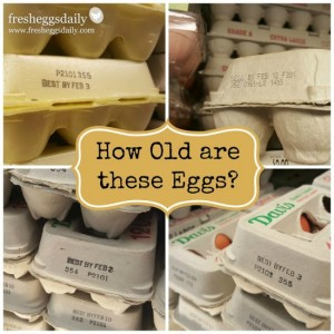 How To Determine The Age Of Eggs You Buy From The Supermarket