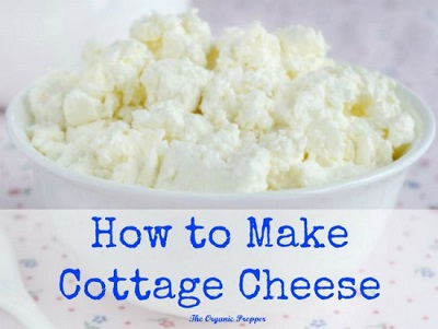 Learn How To Make Cottage Cheese