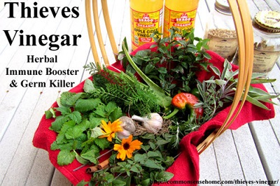 Thieves Vinegar Immune Booster & Germ Killer