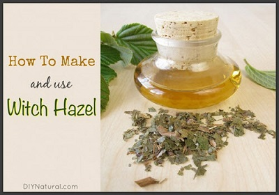 How To Make Your Own Witch Hazel Tonic