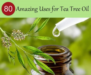 The Miracle Of Tea Tree 80 Amazing Uses