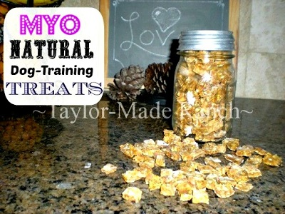 how-to-make-your-own-healthy-dog-training-treats