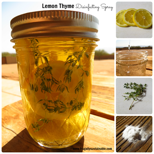 Lemon Thyme Herbal Disinfecting Spray