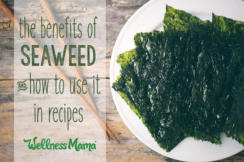The Benefits of Seaweed