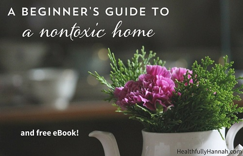 A Beginner's Guide To A Non-Toxic Home
