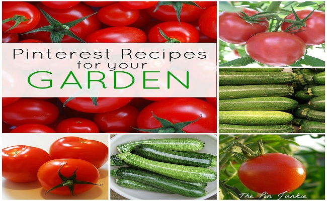 Garden Recipes for Tomatoes and Zucchini
