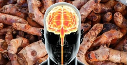 How to Regenerate Your Brain with Turmeric