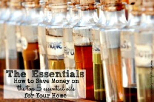 Save Money on the Top 5 Essential Oils for Your Home
