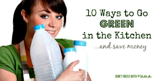 Go Green in the Kitchen and Save Money