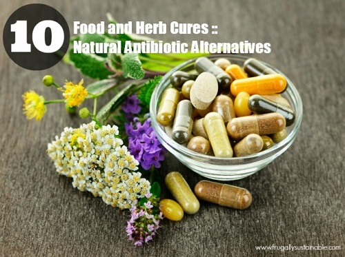 Natural Antibiotic Alternatives