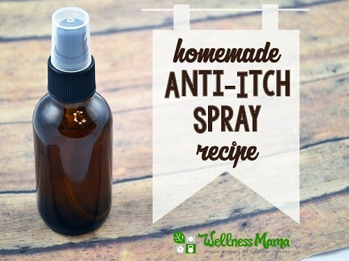 Homemade Anti-Itch Spray with Menthol & Aloe