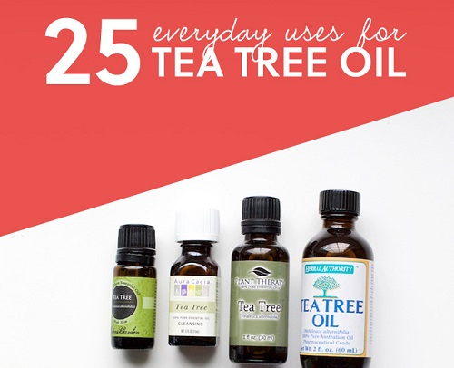 Tea Tree Oil Everyday Uses